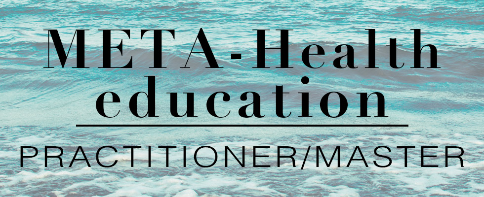 MetaHealth_education_practinioner